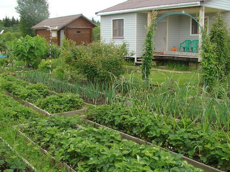 земельный участок под огородничество