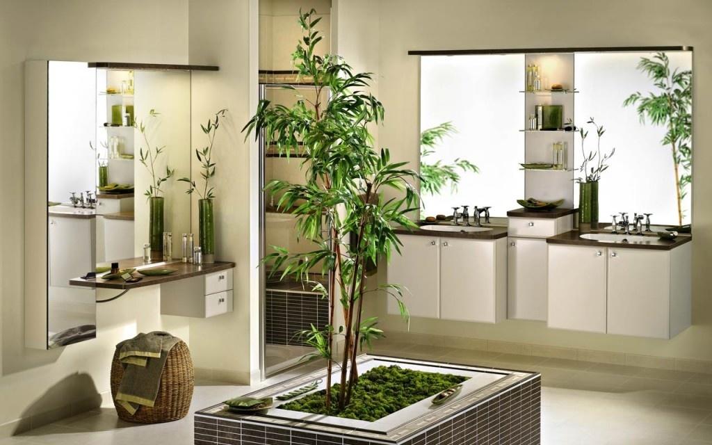 Одиночные растения в домашнем интерьере