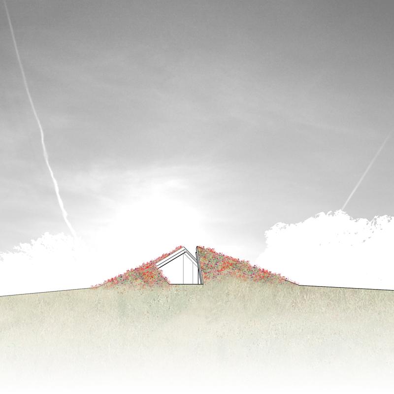 Экологичный Дом-Призрак: Фотообзор нестандартного экстерьера