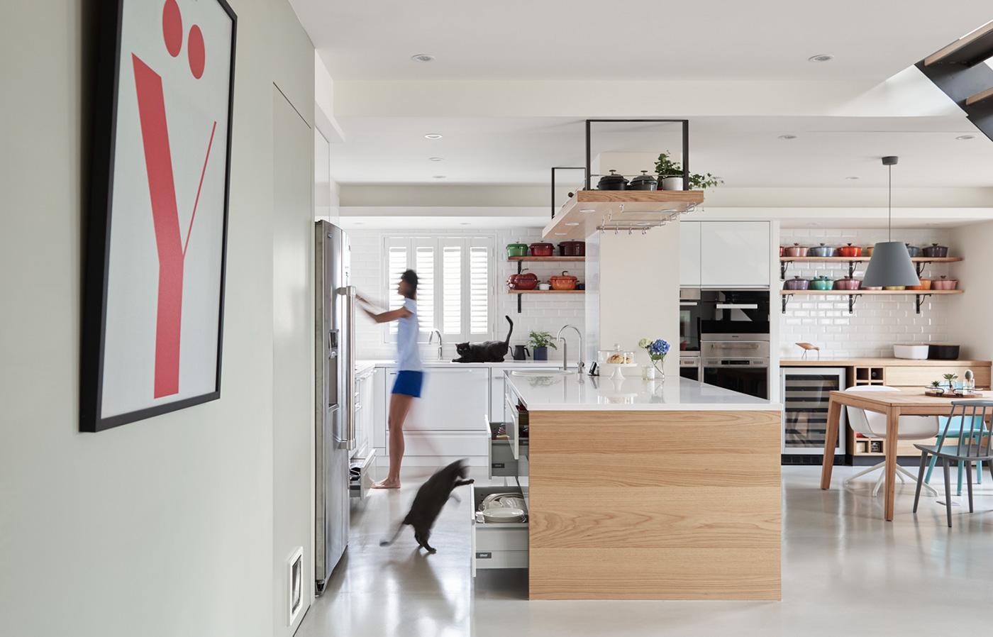 Как сделать кота счастливым: Фотообор домашнего дизайна для людей и кошек