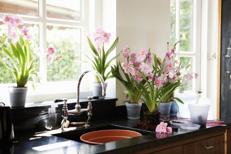 Как обновить интерьер кухни за 24 часа